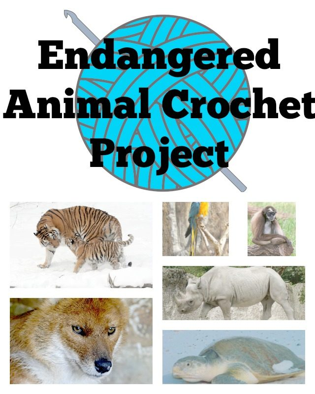 endangered animal crochet project