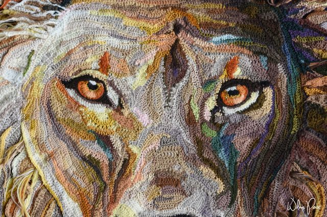 crochet lion face detail