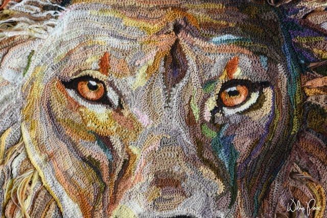 crochet lion face detail