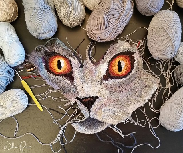 Crochet Cat Face By Wilma Poot