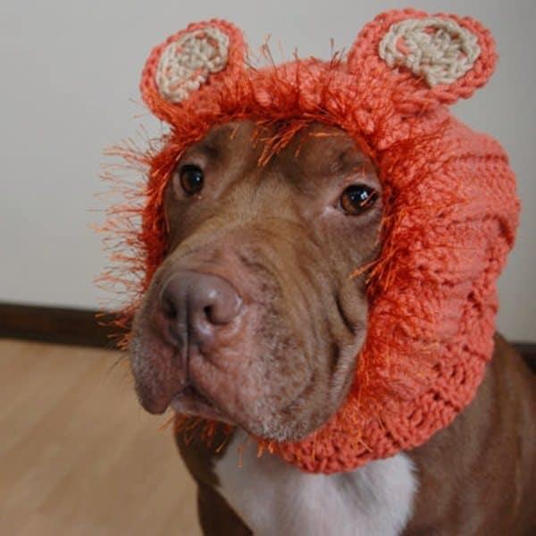 crochet orangutan dog snood